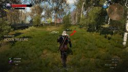 witcher 3 lost goods treasure hunt 1