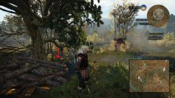 witcher 3 marshes treasure 1