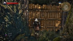 witcher 3 marshes treasure 2