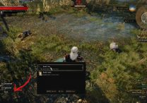 witcher 3 marshes treasure 3