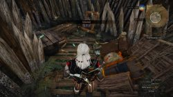 witcher 3 marshes treasure 4