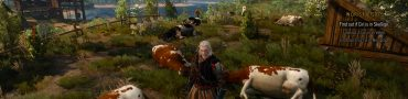 witcher 3 money exploit