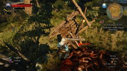 witcher 3 things men do for coin 2