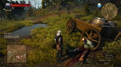 witcher 3 tough luck 1