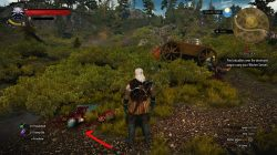witcher 3 tough luck 2