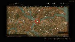 Witcher 3 Harpy Diagram Location