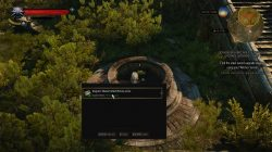 Witcher 3 Mastercrafted Wolf Armor Diagram Location