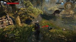 Witcher 3 Mastercrafted Wolven Silver Sword Diagram
