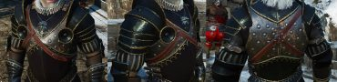 nilfgaardian guardsman heavy armor set
