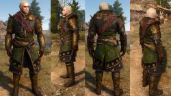 skellige armor set preview