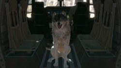 mgs5 phantom pain buddy d dog