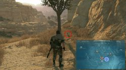 mgsv phantom pain where to find ddog