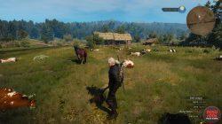 moo-rderer trophy dead cows