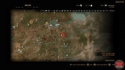 witcher 3 hearts of stone ofieri gear location