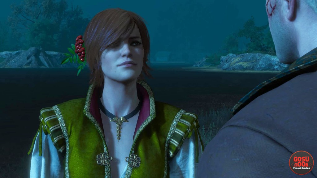witcher 3 hearts of stone romance shani