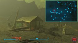 fallout 4 covert ops abandoned shack