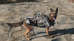 heavy dog armor dogmeat
