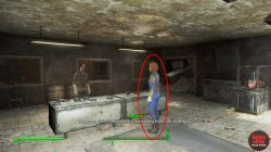 level 4 settlement vendor rylee