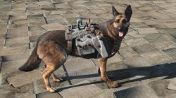 light dog armor dogmeat