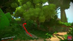 Finding the first Jungle Puzzle the witness