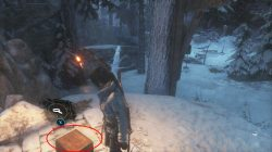 relic collectible locations siberia rottr