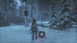 survival cache siberian wilderness location rottr