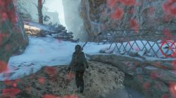 tomb raider ice cave collectibles