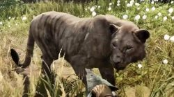 Far Cry Primal Animals Cave Lion