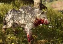 Far Cry Primal Animals Snowblood Wolf