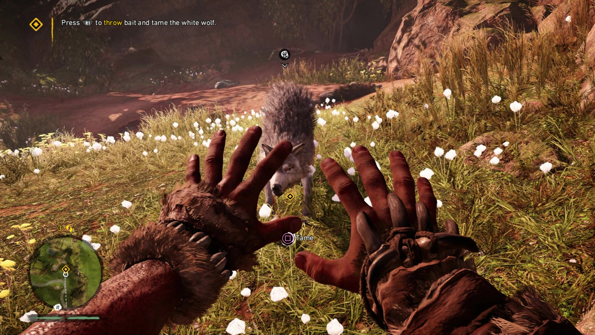 How To Tame The White Wolf Far Cry Primal