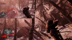 Udam Camp Far Cry Primal Wooden Stakes