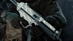 weapon skin ubisoft club reward