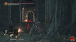 dark souls 3 path of the dragon gesture