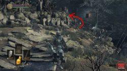 dark souls 3 umbral ash locations