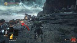 dks3 irithyll dungeon stone dragon