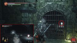 xanthous ash location irithyll dungeon