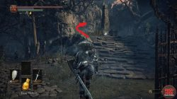 Cleansing Chapel Path to Astora Dark Souls 3
