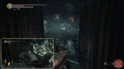 Eleonora Weapon Location Dark Souls 3