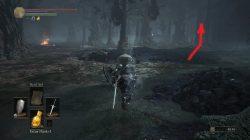 Old Wolf of Farron Bonfire Route Dark Souls 3
