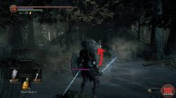 Path to Shadow Set Dark Souls 3