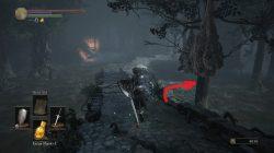 Path to Stray Demon Dark Souls 3