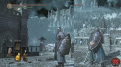 Shield of Want Dark Souls 3