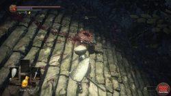 Spider Shield Location Dark Souls 3