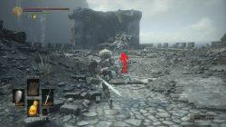 Stray Demon Havel's Ring Dark Souls 3