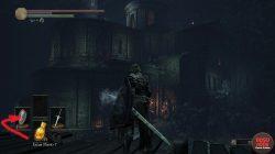 Where to Find Eleonora Dark Souls 3