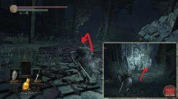 Where to Find Eleonora Weapon Dark Souls 3