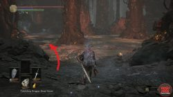 Where to Find Shield of Want Dark Souls 3