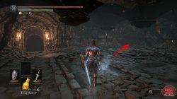 demon ruins hidden wall dks3
