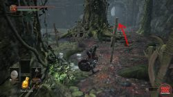 dks3 farron coal location