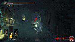 irithyll dungeon mimic chest estus